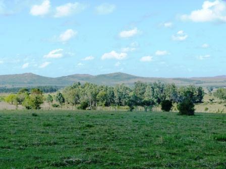 Chacra  en   Sierra de las Animas
