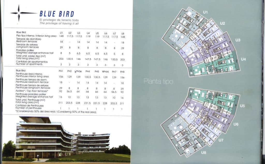 745_Blue Bird sizes