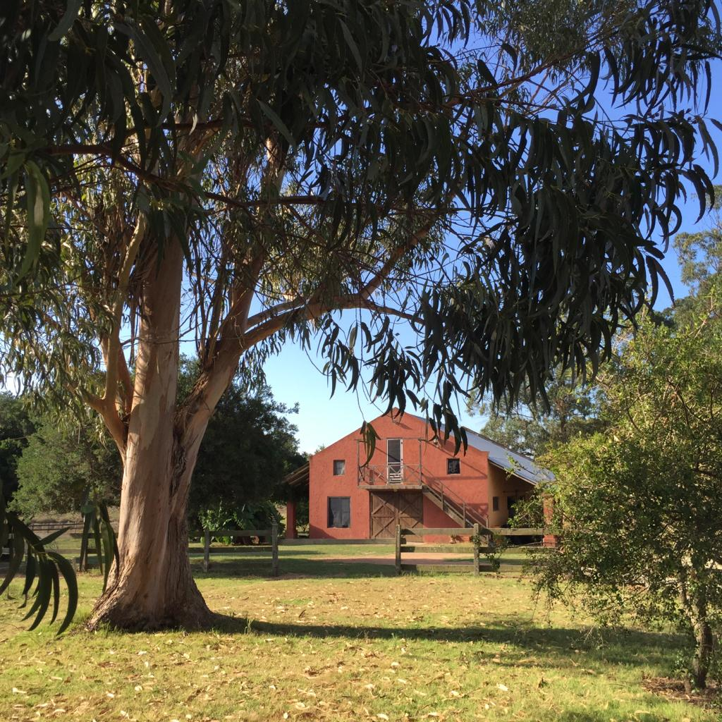 Twelve acres farm with outbuilding for livestock and horseboxes, Lapataia