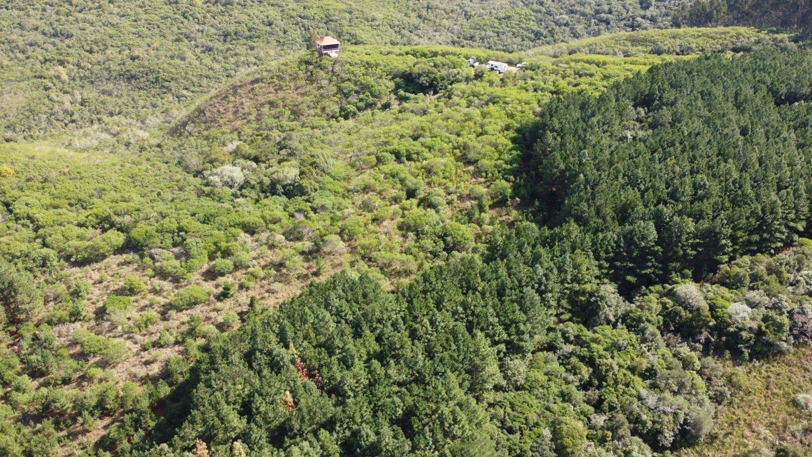 Oportunidad: 97 hectareas en la Sierra de Rocha